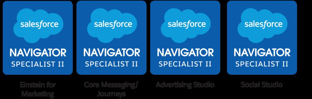 Salesforce Navigator level II badges